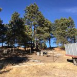 clean-your-trash-out-colorado-springs